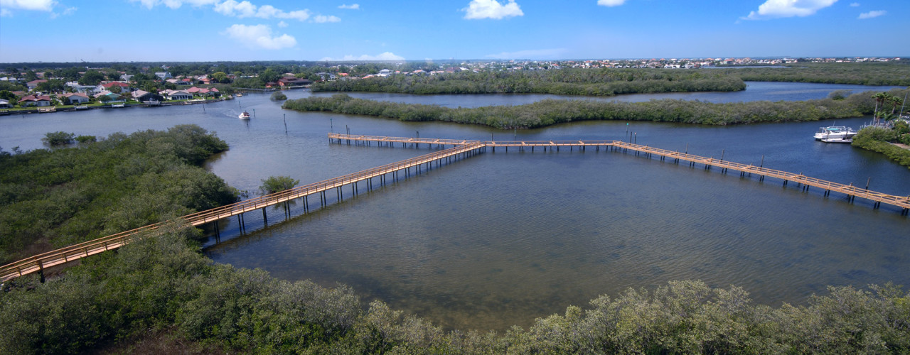 A commercial timber boardwalk through a canal surrounded by mangroves