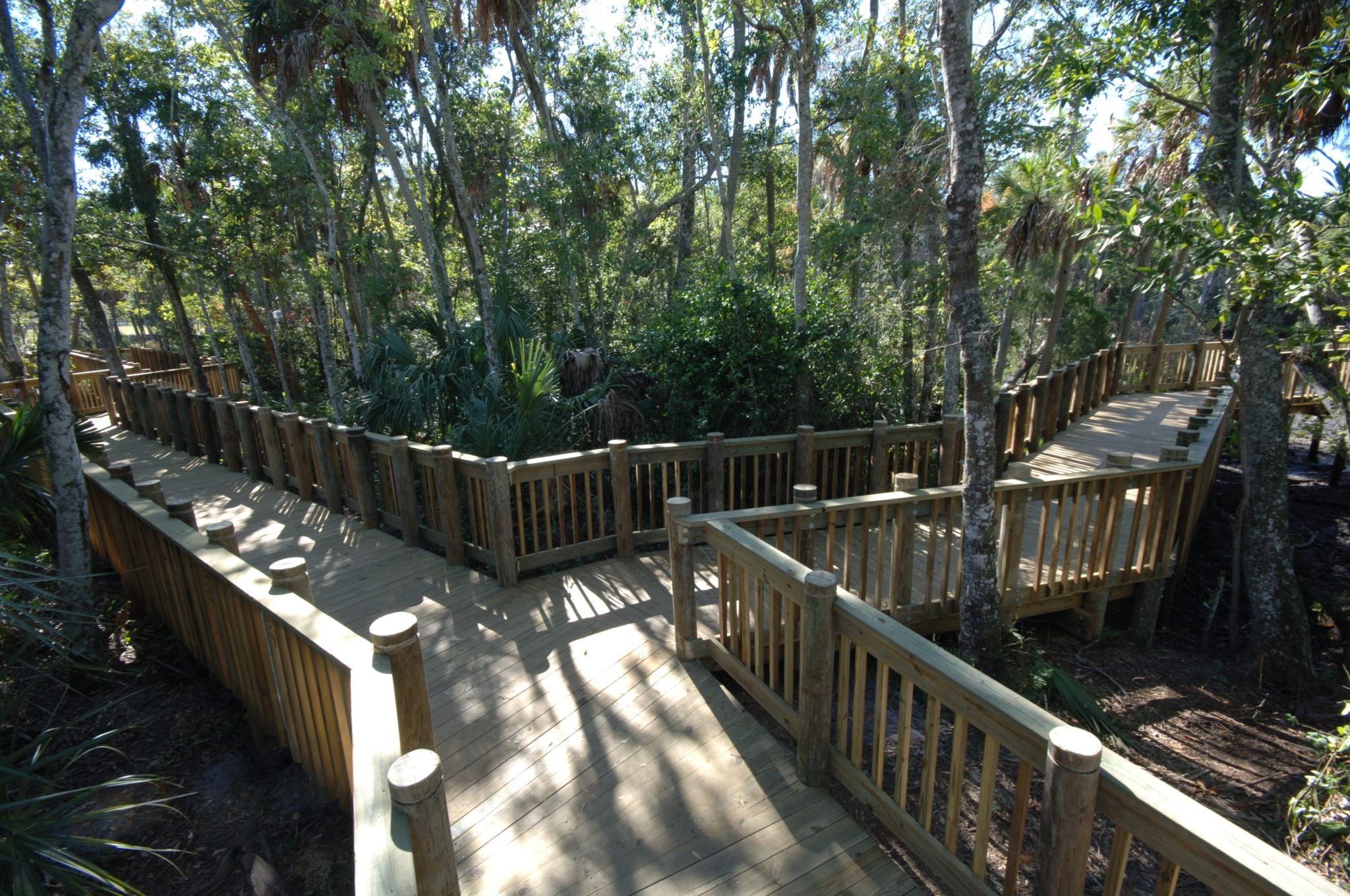 A timber boardwalk through a park with trees with wooden handrail