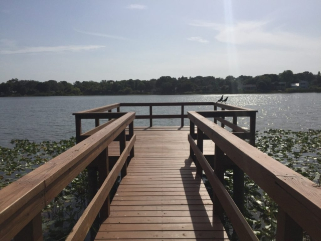 A stationary timber boardwalk and dock over a lake with two birds on the handrail